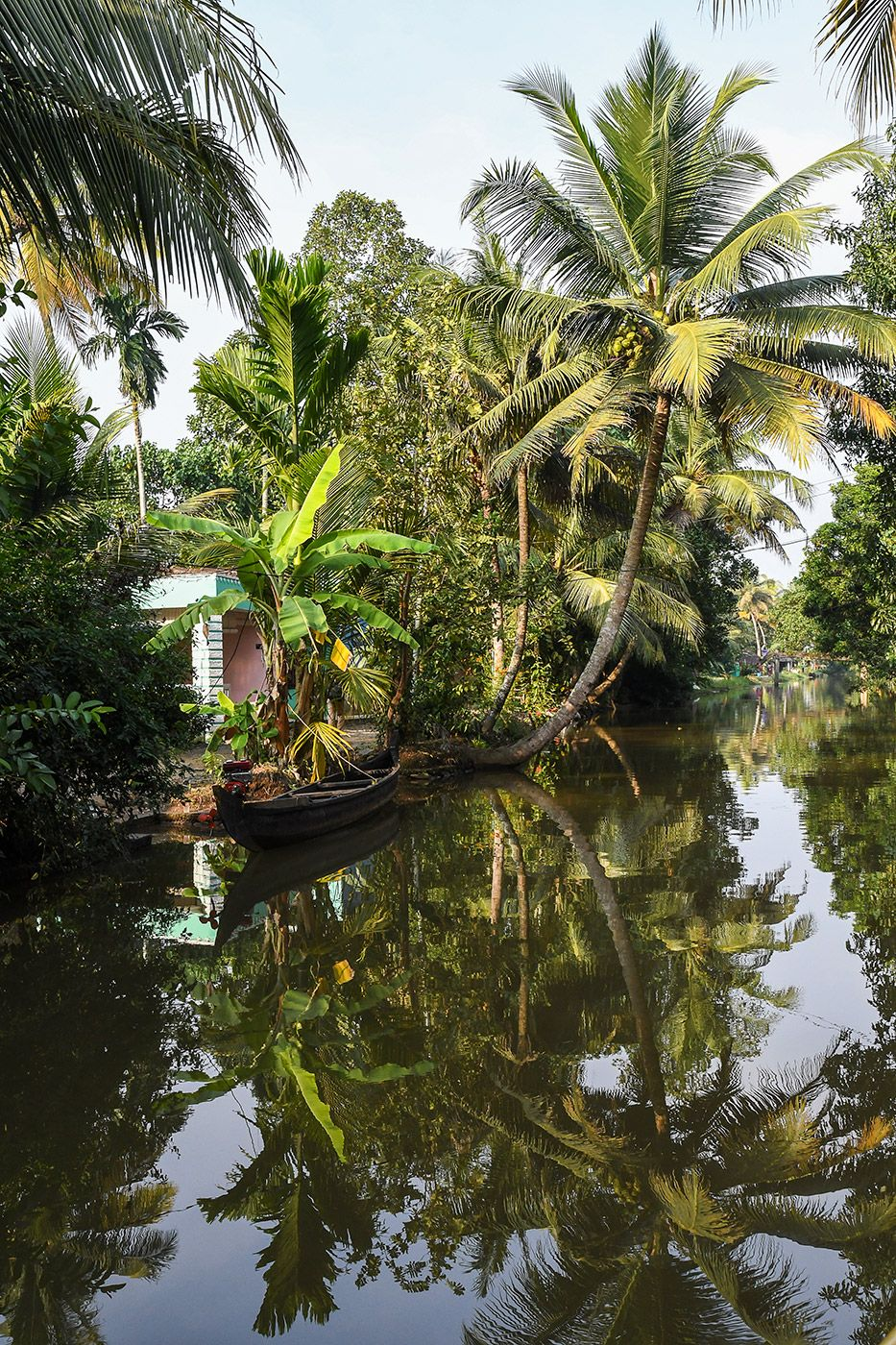 BACKWATERS-08